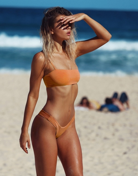 Burnt Orange Cannes Crop Model